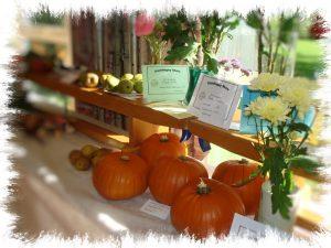Pumpkins at the Gamlingay Show